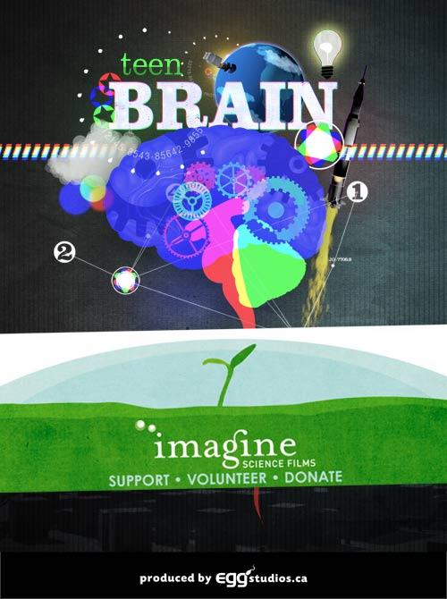 Brain-webbanner2